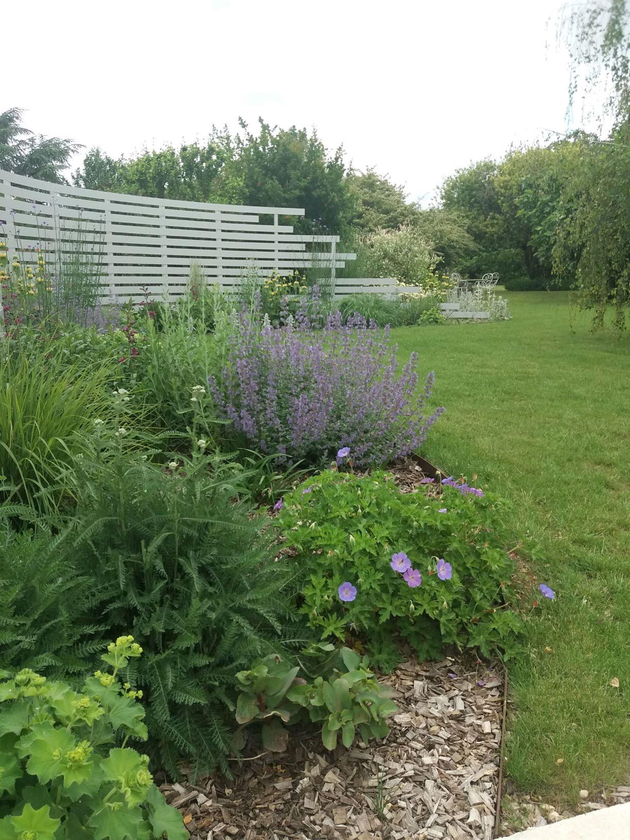 Massif de fleurs violette et plantes vertes dans jardin particulier bien entretenu